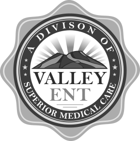 Valley Ent logo